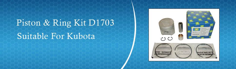 New Kubota V2203-M-DI Rings STD